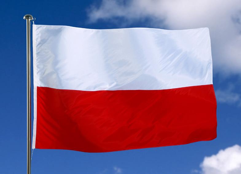 Българино, изгори европейското знаме!