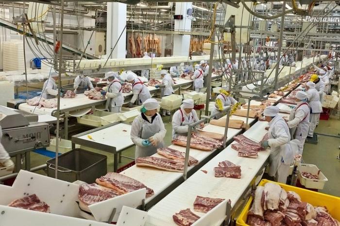 ВРЕМЕТО на Путин: 6 пъти е увеличено производството на месо