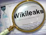 Уикилийкс е трън в таза на Запада