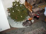 Нещата от Коледата