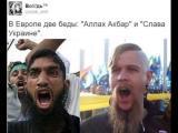 """ЕВРОПА има 2 беди: """"Аллах Акбар"""" и """"Слава Украине"""""""