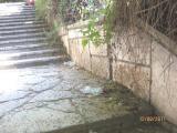 ВАРНА е градът с най-мръсните стълби в света